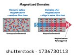 Magnetized Domains Showing...