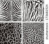 vector black and white... | Shutterstock .eps vector #173682524