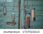 A Collection Of Bird Feeders In ...