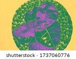 Creative Ficus Flower Green An...