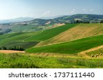 Rural landscape near Medesano, in Parma province, Emilia-Romagna, Italy, at summer
