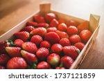 Freshly Picked Strawberry On...
