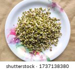 Small photo of Green sprouted moong in a plate. Mung bean sprouts are a culinary vegetable grown by sprouting mung beans. Mung Bean Sprout