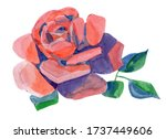 Watercolor Painting Flower Rose ...