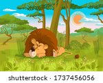 The Lion Sleeps In The Grass...
