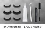 false eyelashes of various...   Shutterstock .eps vector #1737875069