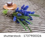 Muscari Bouquet Tied With Linen ...