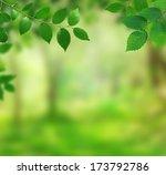 spring background | Shutterstock . vector #173792786