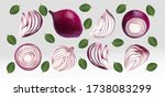 set of red onion with leaves on ... | Shutterstock .eps vector #1738083299