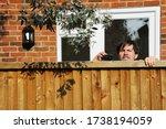 Nosy Neighbor Looking Over Fence