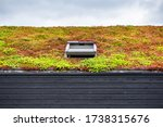 Small photo of Wooden building with a green roof completely covered with vegetation. Extensive green sustainable sedum cassette roof with succulent plants. Roof greening with succulents. Skylight in the middle