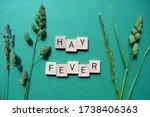 Hay Fever  Words In Wooden...