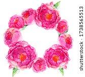 watercolor pink peony flowers... | Shutterstock . vector #1738565513
