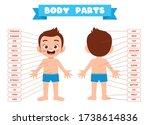 happy cute kid boy body part... | Shutterstock .eps vector #1738614836