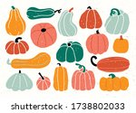 Different Types Of Pumpkin And...