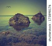 Vintage Seascape With A...