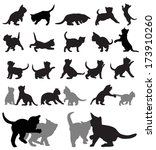 Stock vector vector set of kitten silhouettes 173910260
