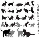 vector set of kitten...   Shutterstock .eps vector #173910260