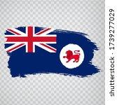 flag of  tasmania brush strokes....