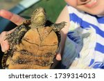 A Man Holding A Turtle And...