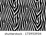zebra stripes seamless pattern  ... | Shutterstock .eps vector #173953934