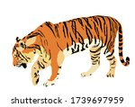 Tiger Vector Illustration...