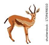 dorcas gazelle vector... | Shutterstock .eps vector #1739698010
