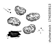 Raisins Vector Drawing. Dried...