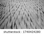 Sand Texture Pattern. Black An...
