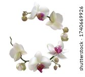 tropical flowers. orchid....   Shutterstock .eps vector #1740669926