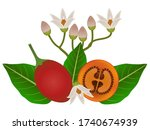 whole tamarillo and half with...   Shutterstock .eps vector #1740674939
