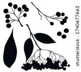 berries  black silhouette ...   Shutterstock .eps vector #1740677663