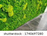Decorative Moss Walls In The...