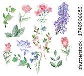 watercolor floral illustration... | Shutterstock . vector #1740906653