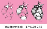 Hand-drawn human hearts, vector illustration, collection - stock vector