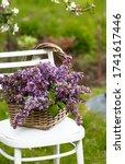 A Beautiful Bouquet Of Lilacs...