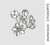 floral vector illustration.... | Shutterstock .eps vector #1741663970