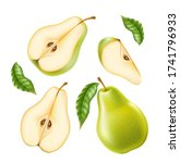 vector realistic green pear...   Shutterstock .eps vector #1741796933