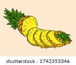 vector hand drawn pineapple.... | Shutterstock .eps vector #1742353346