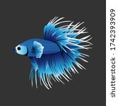 betta fish crown tail blue... | Shutterstock .eps vector #1742393909