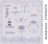 vintage lavender background ... | Shutterstock .eps vector #174256274