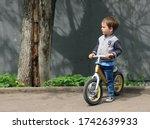 Little Boy In A Gray Jacket ...