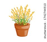 yellow flowers herb in a pot... | Shutterstock .eps vector #1742744513