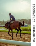 Small photo of Training and racing at the Garrison in Bridgetown Barbados is as close to horse races as anyone will get.