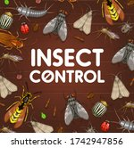 Pest Control And Insect...