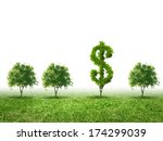 conceptual image of green plant ... | Shutterstock . vector #174299039