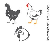 agriculture,animal,beak,bird,black,chicken,comb,design,egg,farm,food,graphic,head,hen,icon