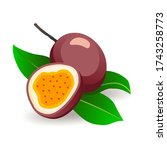passionfruits with leaves on... | Shutterstock .eps vector #1743258773