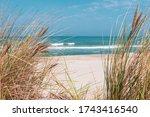 Beautiful Sand Beach With Dry...