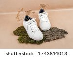 Ethical Vegan Shoes Concept. A...